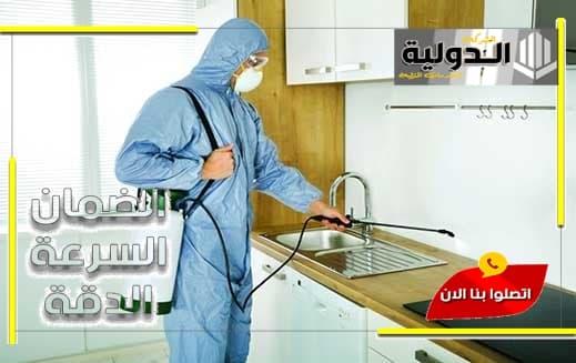 شركة مكافحة حشرات شمال الرياض